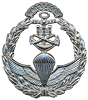 Marine Corps Special Operations Forces, known as Amphibious Commandos, NCO Beret Badge.