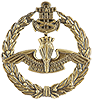 Special Operations Forces, known as Amphibious Commandos, Officer Beret Badge.