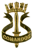 Amphibious Commandos , Officer/NCO qualification Badge. Used as well a Beret Badge since 2006