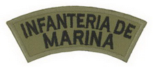 Officer/Enlisted right sleeve patch and left Breast Patch.