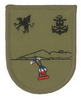 Chilean Marine Corps Iquique Order and Security Garrison, attached to 4th Naval Zone Headquarter at Iquique, Officer/Enlisted left sleeve patch.