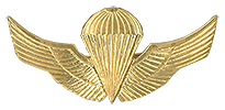 Basic Parachuitst (Paracaidista Básico) Officer/NCO qualification Breast Wings.   Used as well a Beret Badge since 2006.