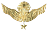 Senior Parachutist (Paracaidista Guía de Salto) Officer/NCO qualification Breast Wings.   Used as well a Beret Badge since 2006.