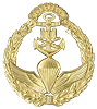 Marine Corps Special Operations Forces, known as Amphibious Commandos, Officer Beret Badge.