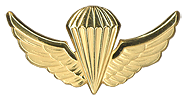 Parachutist Wings Basic. Used  from 1986 to 1990.