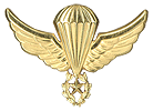 Parachutist Wings Master Used  from 1986 to 1990.