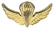 Pathfinder Parachutist Wings Basic. Used from 1986 to 1990.