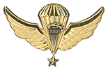 Pathfinder Parachutist Senior Wings. Used from 1986 to 1990.