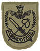 The Chilean Navy Special Forces Command
