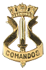 .   Amphibious Commandos  , Officer/NCO qualification Badge.   Used as well a Beret Badge since 2006