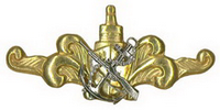 qualification badge (type 1)