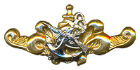 qualification badge (type2)