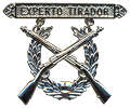 expert rifle qualification  badge