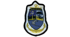 Naval Commando sleeve patch