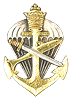 Amphibious Commando Qalification badge
