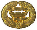 Br Nylands lapel badge