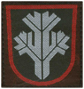 Ranger sleeve patch