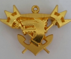 Norwar KAkistan Beret Badge