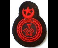 Pakistan Beret Badge