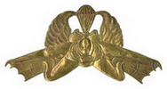Amphibious Recon KIPAM qualification badge