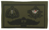 Combined Qualification Patch