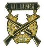 Rifle Qualificate badge ULUNG