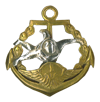 Free-Fall Qualification badge