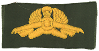 Amphibious Recon KIPAM Qualification Patch