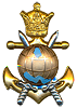 beret badge ( shah time)