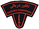 commando shoulder patch