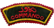 commando shoulder title