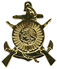 President Guard B-n beret badge
