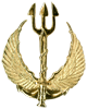 Commando beret badge