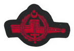 commando qualification badge (NAVY)