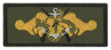 qualification patch