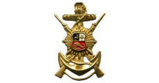 Honor Guard breast badge