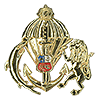 Commando qualification badge