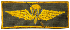 recon parashutist qualification badge