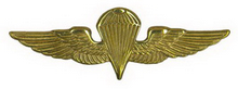recon parachutist qualification badge