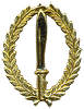 qualificationt badge