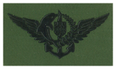 DAE ( project) clothe insignia