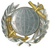 qualification badge 1980-90 (project)
