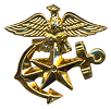 Enlisted Lapel Badge
