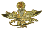Special Recon Training Badge