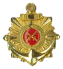 COMMANDER BADGE FOR COMPANY