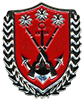 COMMAND SERGEANT MAJOR BADGE OF MARINE REGIMENT