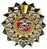 COMMANDER BADGE