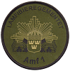 Amf 1 sleeve patch