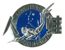 Diner Qualification badge