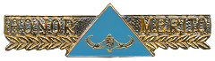 Maritorious Service Breast Badge